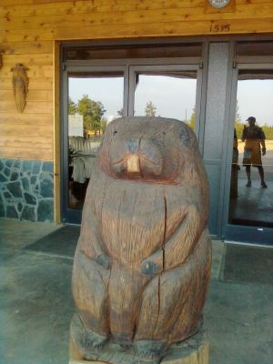 Carolina Adventure World, All-Terrain Disc Golf, Hole 1 Long tee pad