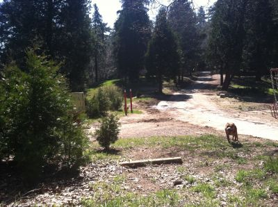 Thousand Pines, Lower Course, Hole 15 Tee pad