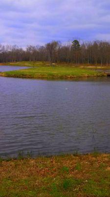 Selah Ranch, Lakeside, Hole 7 Midrange approach