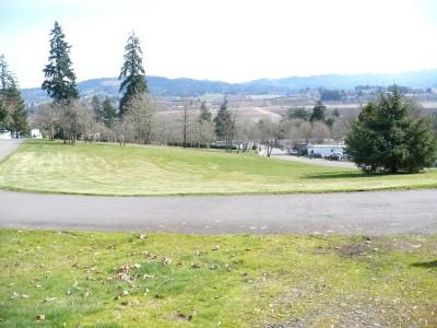 Hillside DGC, The Playground, Hole 6 Tee pad