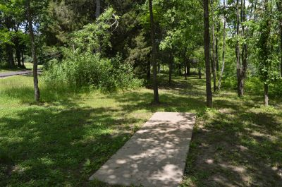 Paradise Point, Blackthorn, Hole 7 Tee pad