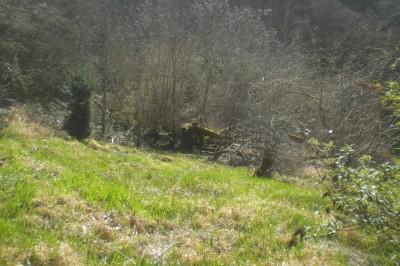 Lion Hill, Main course, Hole 3