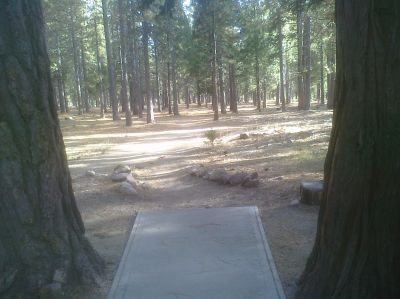 University of OB, Main course, Hole 2 Tee pad