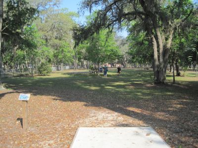 Under The Oaks, Main course, Hole 8 Tee pad