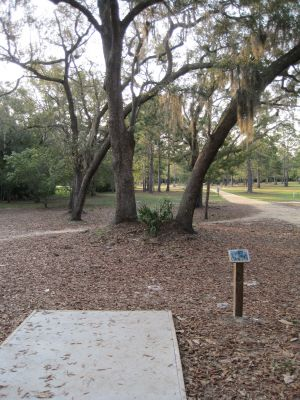 Under The Oaks, Main course, Hole 2 Tee pad