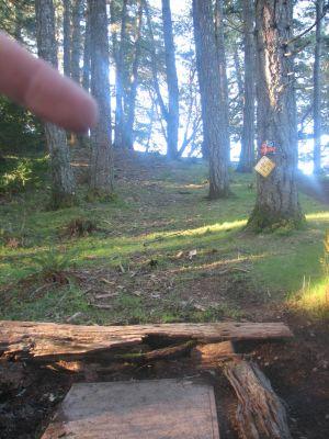KOA Campground, Main course, Hole 8 Tee pad