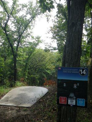 Longview Park, Main course, Hole 14 Tee pad