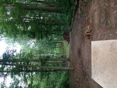 Wood County Veterans Memorial Park, Main course, Hole 5 Tee pad