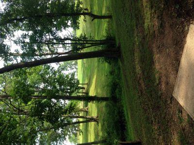 Wood County Veterans Memorial Park, Main course, Hole 6 Tee pad