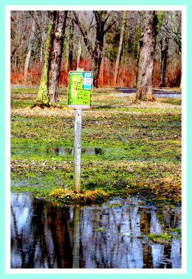 Ellicott Creek, Main course, Hole 10 Tee pad