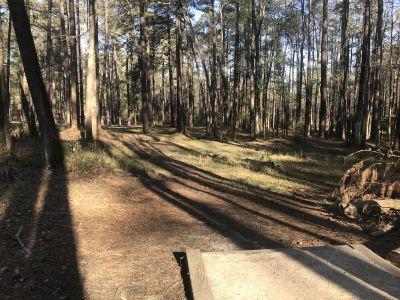 Mazarick Park, Glenville Pines, Hole 17 Tee pad