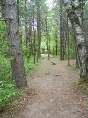Silver Creek Recreational Area, The Creek, Hole 3 Long tee pad