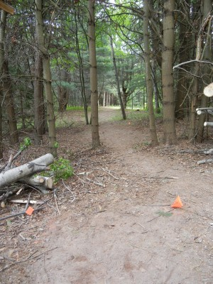 Silver Creek Recreational Area, The Creek, Hole 6 Long tee pad