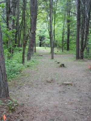 Silver Creek Recreational Area, The Creek, Hole 3 Short tee pad