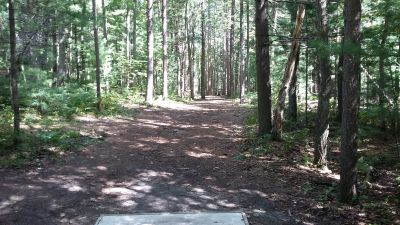 Silver Creek Recreational Area, The Creek, Hole 4 Long tee pad