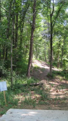 Inverness Disc Golf Park, Main course, Hole 11 Long tee pad