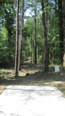 Inverness Disc Golf Park, Main course, Hole 9 Long tee pad