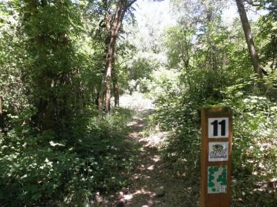 Payson Canyon, Main course, Hole 11 Tee pad