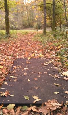Echo Park, Main course, Hole 8 Long tee pad