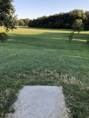 Woodmere DGC, Main course, Hole 7 Long tee pad