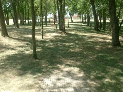Joshua Park, Main course, Hole 4 Tee pad