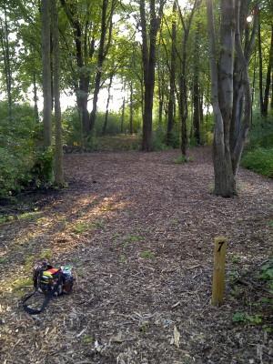 Ira Township Park, Ira Township DGC, Hole 7 Long tee pad