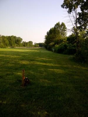 Ira Township Park, Ira Township DGC, Hole 5 Long tee pad