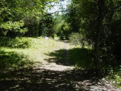 West Thompson Lake, Main course, Hole 2 Tee pad