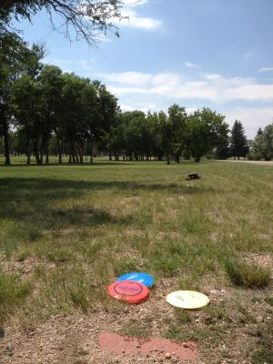 F. E. Warren Air Force Base, Warren DGC, Hole 5 Tee pad