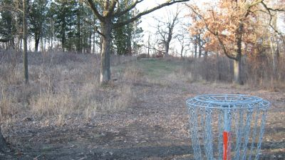Charles Langer Park, Main course, Hole 15 Reverse (back up the fairway)