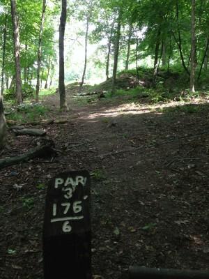 Bosquet DGC, Main course, Hole 6 Tee pad