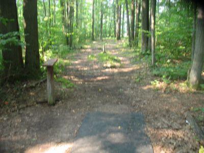 Panthorn Park, Main course, Hole 2 Long tee pad