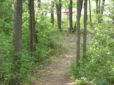 Terrace Park, The Backyard, Hole 6 Midrange approach