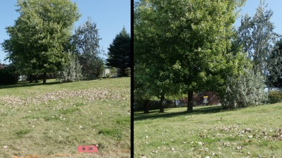 Ile Charron, Parcours Ile Charron (PIC), Hole 13 Short tee pad