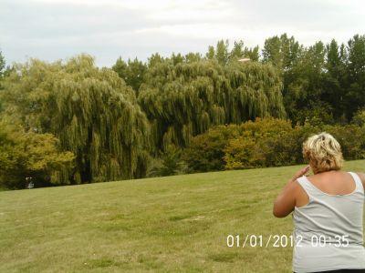 Ile Charron, Parcours Ile Charron (PIC), Hole 12 Short tee pad