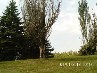 Ile Charron, Parcours Ile Charron (PIC), Hole 8 Midrange approach
