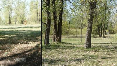 Ile Charron, Parcours Ile Charron (PIC), Hole 4 Long tee pad