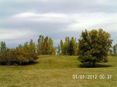Ile Charron, Parcours Ile Charron (PIC), Hole 11 Tee pad