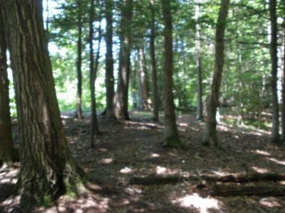 St. Paul's Collegiate Park, Main course, Hole 1 Midrange approach