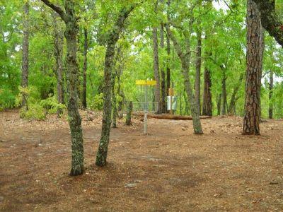 Arrowhead Park, Main course, Hole 1 Putt