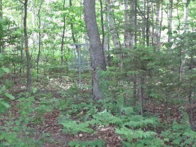 Turbine Pines, Main course, Hole 3 Putt