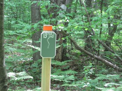 Turbine Pines, Main course, Hole 13 Tee pad