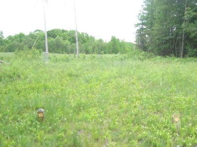 Turbine Pines, Main course, Hole 2 Tee pad