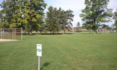 Cass City Park, Main course, Hole 2 Tee pad