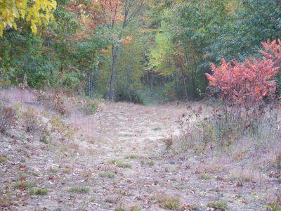 Moose Meadows, Main course, Hole 4 Tee pad
