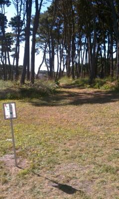Bandon City Park, Main course, Hole 4 Tee pad