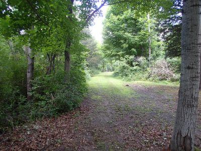 Sage Creek, Sage Creek, Hole 5 Tee pad