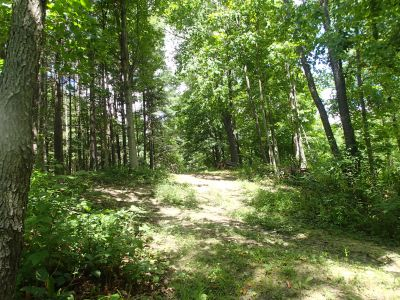 Sage Creek, Sage Creek, Hole 19 Tee pad