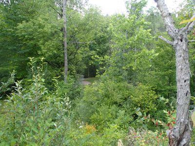 Sage Creek, Sage Creek, Hole 22 Long approach