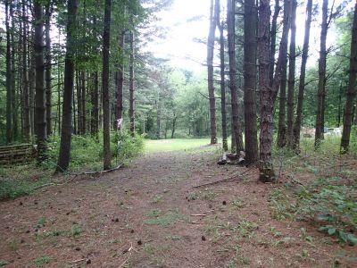 Sage Creek, Sage Creek, Hole 8 Tee pad